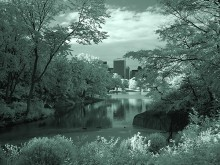 Central Park XII