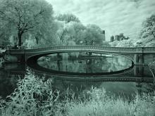 Central Park XX